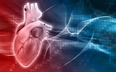 Daño endotelial: el origen de todos nuestros males