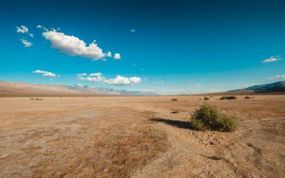 La desertificación y su impacto en el medioambiente